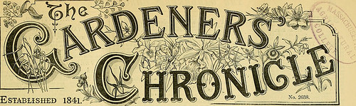 "Image from page 74 of ""The Gardeners' chronicle : a weekly illustrated journal of horticulture and allied subjects"" (1874)"